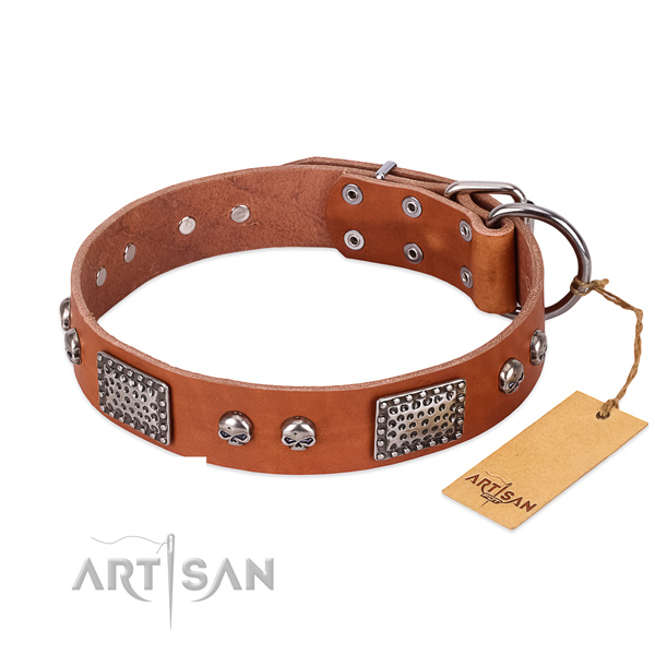 Easy wearing full grain genuine leather dog collar for daily walking your pet