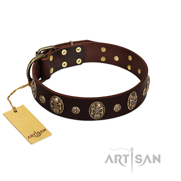 Perfect fit full grain natural leather collar for your doggie