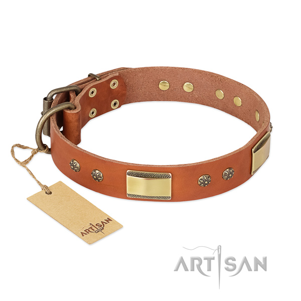 Fashionable natural genuine leather collar for your four-legged friend