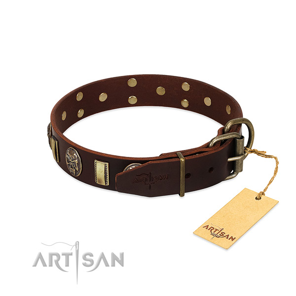 Leather dog collar with reliable fittings and adornments