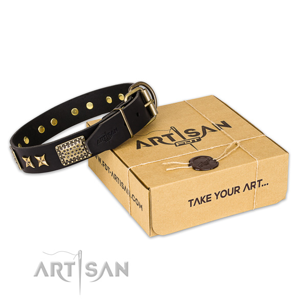 Rust-proof traditional buckle on leather collar for your handsome pet