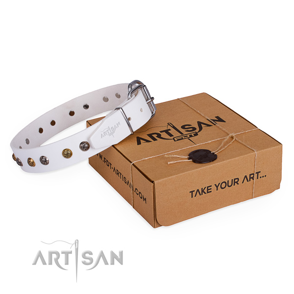 Stylish walking dog collar with Awesome corrosion resistant adornments