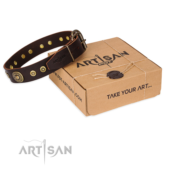 Full grain genuine leather dog collar made of reliable material with rust resistant fittings