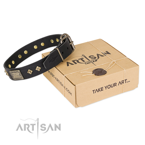 Top notch leather collar for your impressive dog