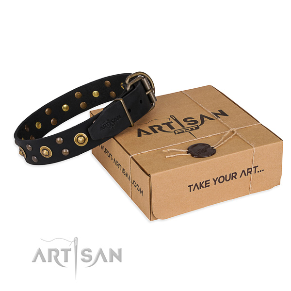 Strong traditional buckle on genuine leather collar for your handsome dog