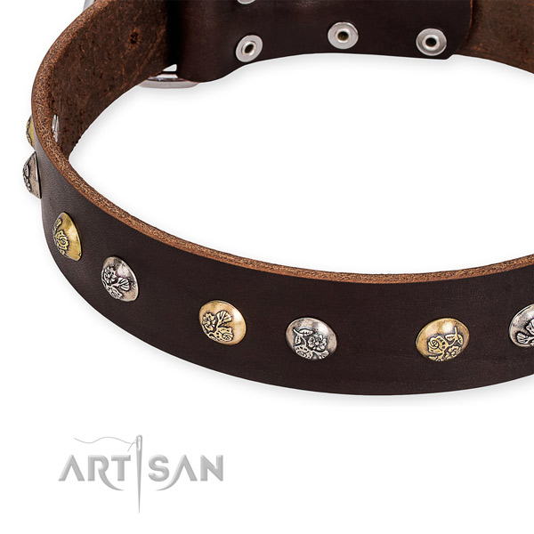 Full grain genuine leather dog collar with exceptional corrosion resistant decorations