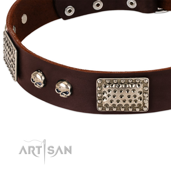 Reliable embellishments on genuine leather dog collar for your doggie