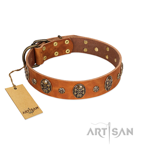 Incredible natural genuine leather collar for your dog