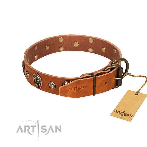 Reliable traditional buckle on full grain genuine leather collar for fancy walking your pet