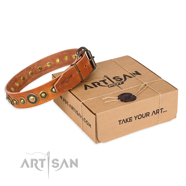 Gentle to touch leather dog collar crafted for comfy wearing