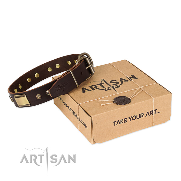 Designer leather collar for your handsome doggie