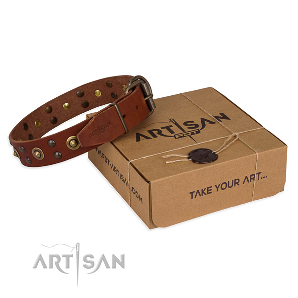 Rust-proof fittings on full grain leather collar for your handsome four-legged friend