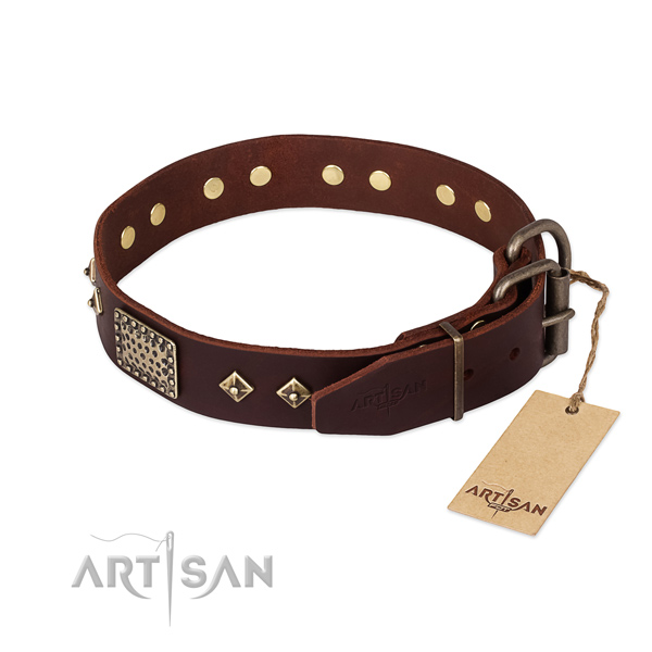 Full grain genuine leather dog collar with corrosion resistant fittings and embellishments