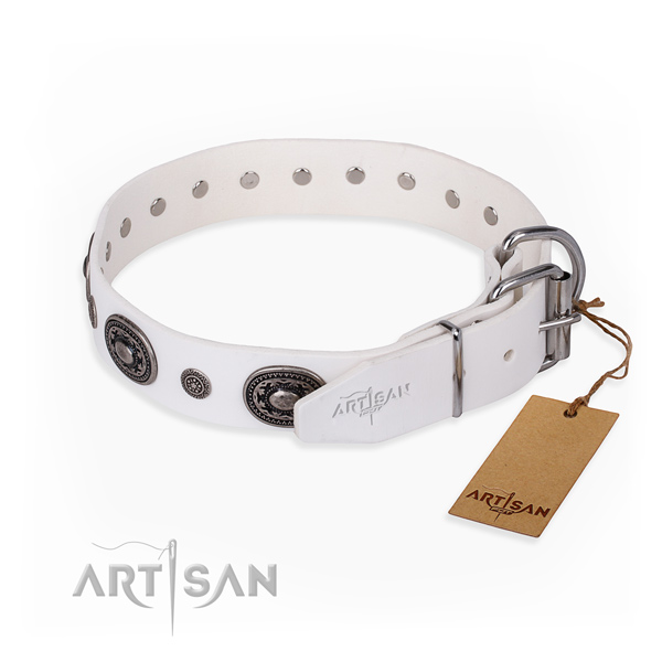Quality full grain natural leather dog collar handcrafted for stylish walking