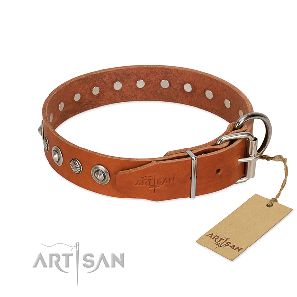 Quality full grain leather dog collar with stylish design embellishments