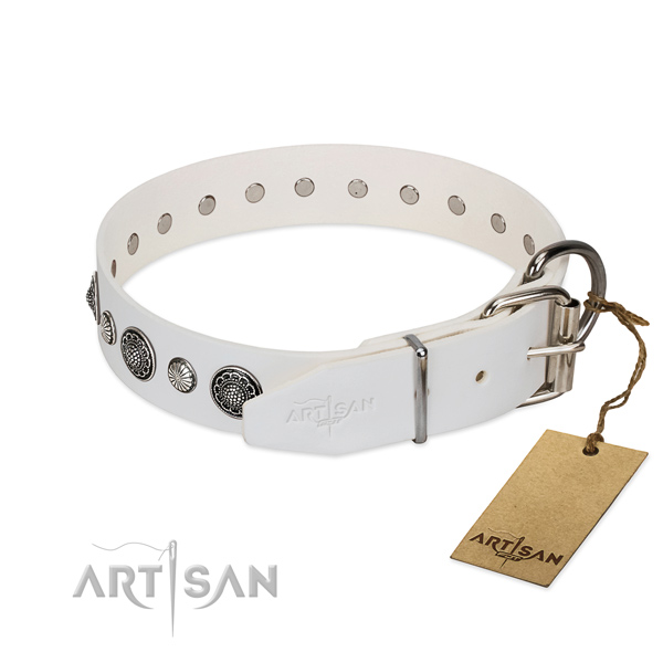 Durable genuine leather dog collar with rust-proof traditional buckle