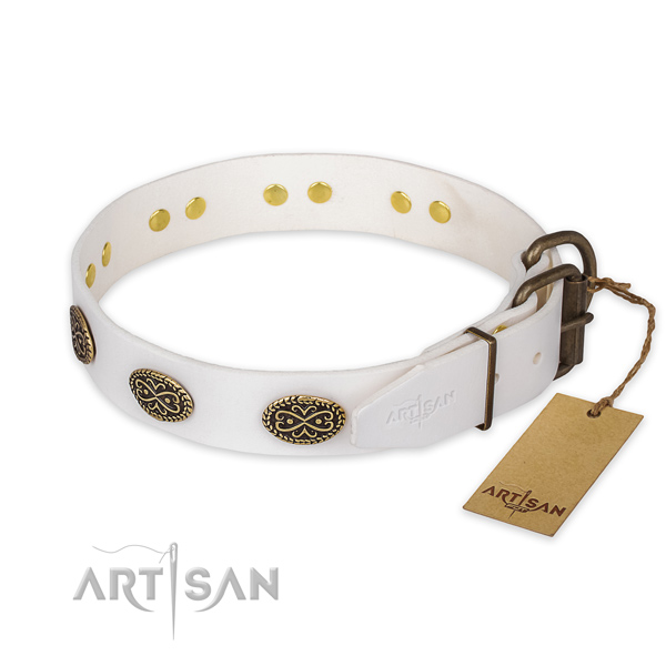 Corrosion proof hardware on full grain natural leather collar for daily walking your four-legged friend