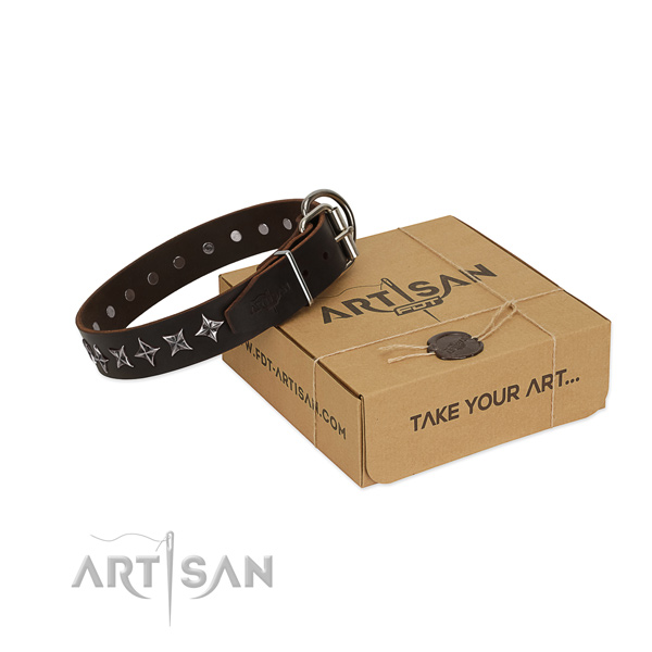Daily use dog collar of high quality genuine leather with adornments