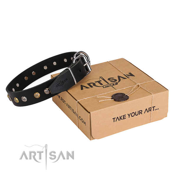 Top notch leather dog collar made for everyday walking