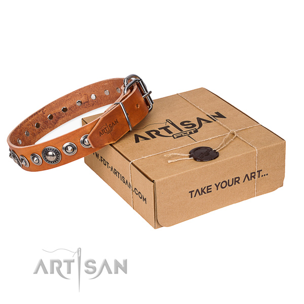 Leather dog collar made of soft to touch material with reliable buckle