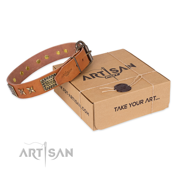 Reliable traditional buckle on leather collar for your impressive dog