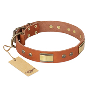 """Enchanting Spectacle"" FDT Artisan Tan Leather Rottweiler Collar with Old Bronze Look Plates and Round Studs"