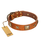 """Celtic Tunes"" FDT Artisan Tan Leather Rottweiler Collar Adorned with Stars and Squares"