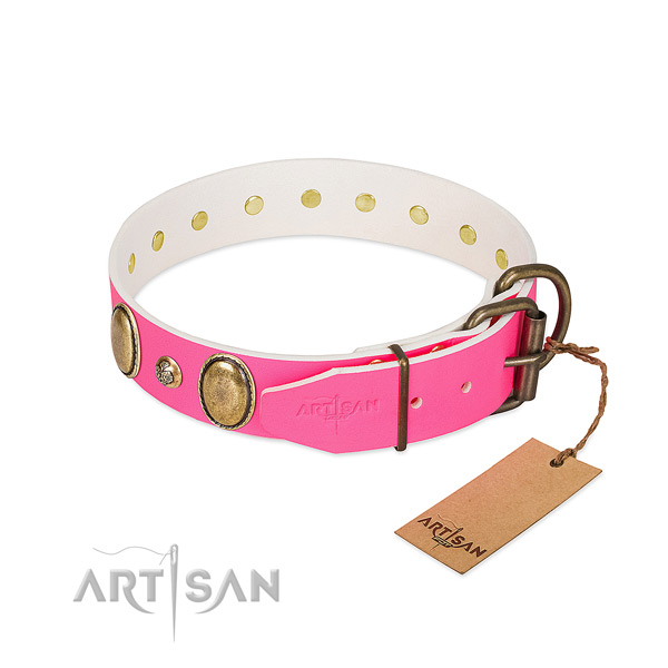 Everyday use top notch full grain leather dog collar