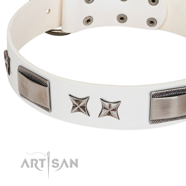 High quality leather dog collar with corrosion resistant buckle