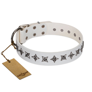 """Midnight Stars"" FDT Artisan Fashionable Leather Rottweiler Collar with Old Silver-like Plated Decorations"