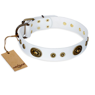 """Magnetic Appeal"" FDT Artisan White Leather Rottweiler Collar with Old Bronze Look Decorations"