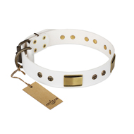 """Precious Necklace"" FDT Artisan White Leather Rottweiler Collar with Old Bronze Look Plates and Studs"