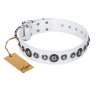 """Ice Age"" FDT Artisan White Studded Leather Rottweiler Collar"