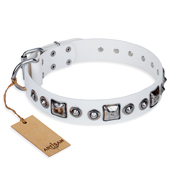 """Lustre of Fame"" FDT Artisan White Studded Leather Rottweiler Collar"