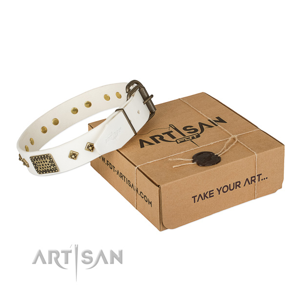 Stylish full grain genuine leather collar for your stylish dog