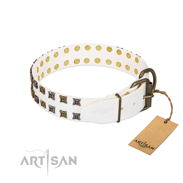 Full grain leather collar with amazing decorations for your dog