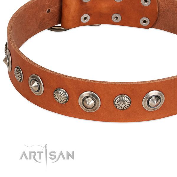 Awesome decorated dog collar of top quality full grain natural leather