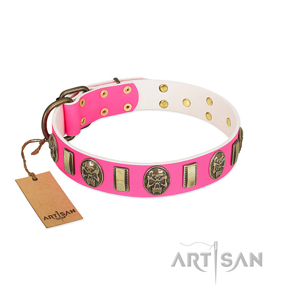 Corrosion proof traditional buckle on leather dog collar for your four-legged friend