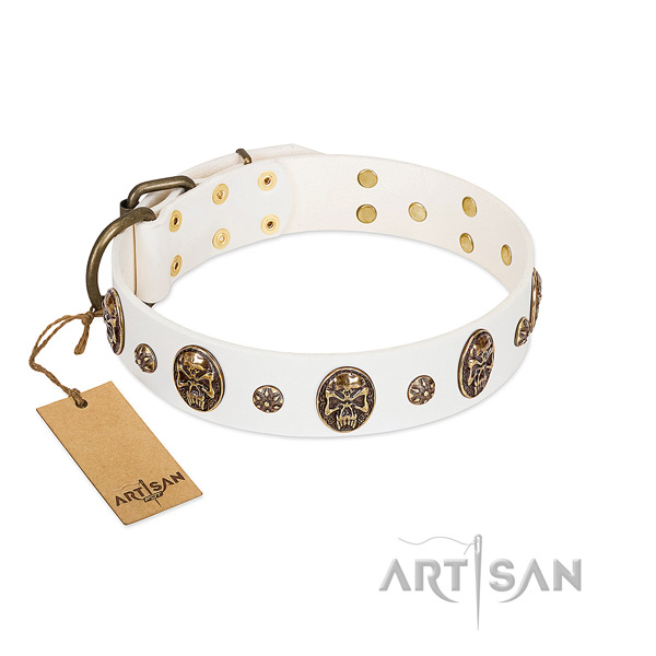 Embellished genuine leather collar for your doggie