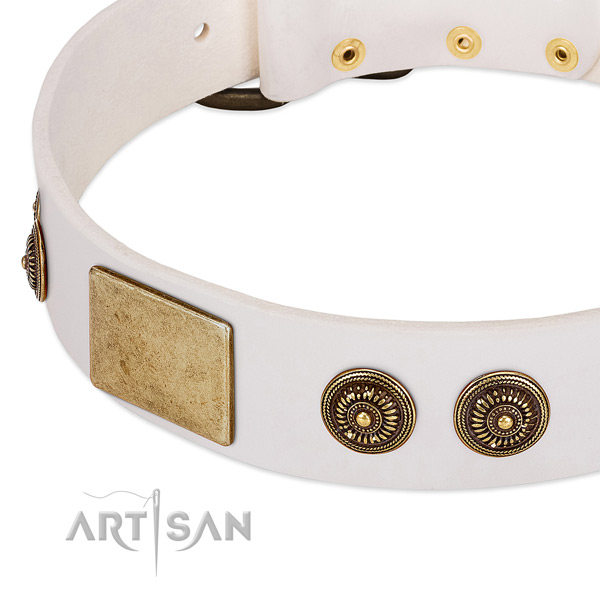 Top quality dog collar created for your stylish canine
