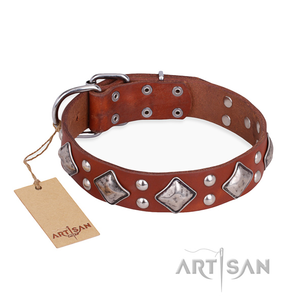 Fancy walking incredible dog collar with strong D-ring