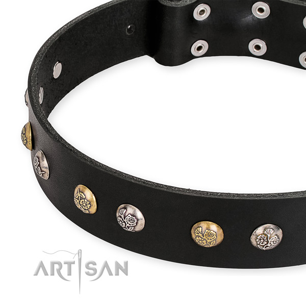 Full grain natural leather dog collar with impressive rust-proof embellishments
