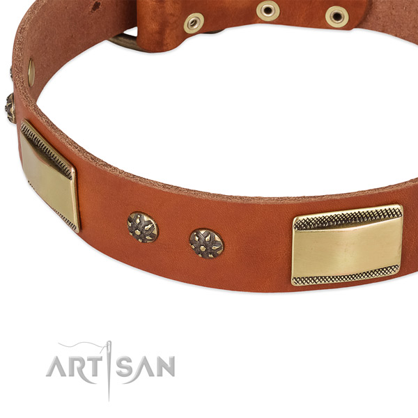 Rust-proof traditional buckle on leather dog collar for your four-legged friend