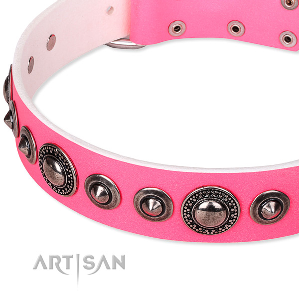 Comfortable wearing decorated dog collar of strong full grain leather