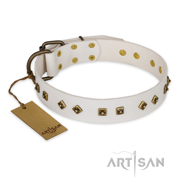 Studded leather dog collar with corrosion proof fittings