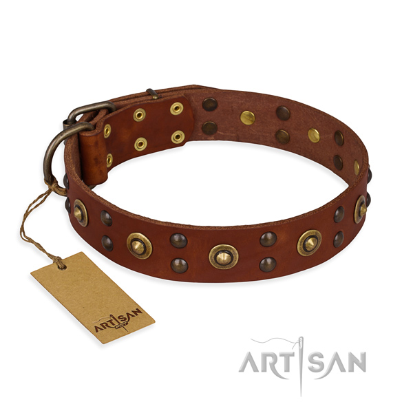 Studded genuine leather dog collar with rust resistant buckle