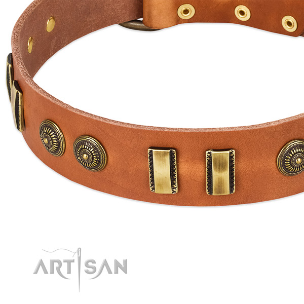 Rust resistant embellishments on natural leather dog collar for your dog