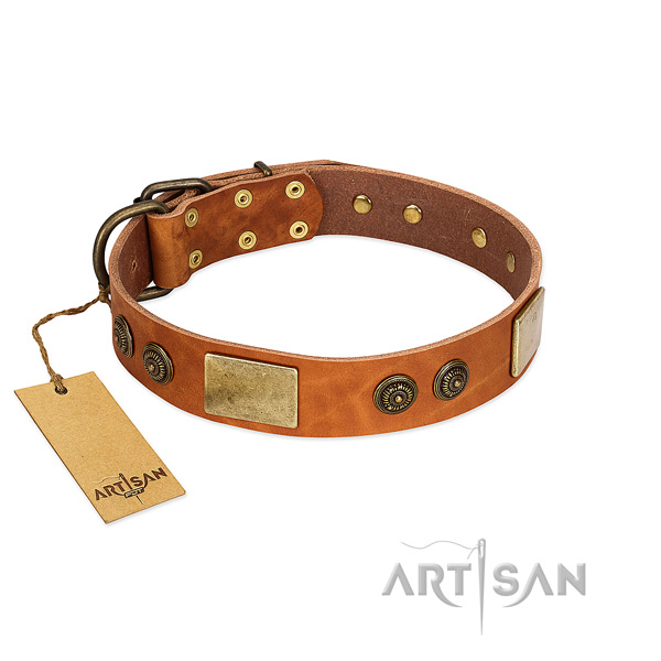 Fashionable genuine leather dog collar for easy wearing