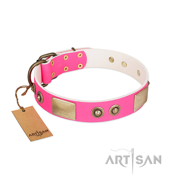 Rust resistant adornments on leather dog collar for your dog