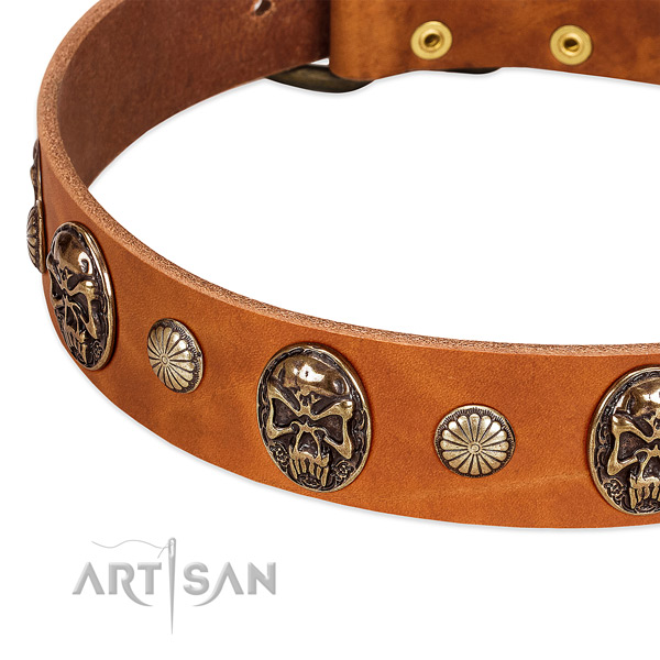 Reliable traditional buckle on natural genuine leather dog collar for your dog